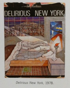 Cover of Delirious New York 1978.