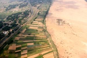River delta agriculture, Orissa